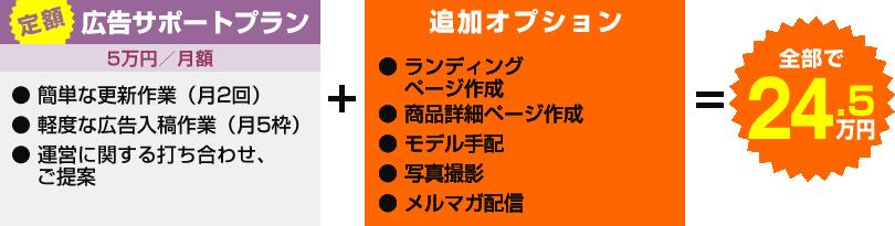 ライトプラン+追加オプション全部で9万円